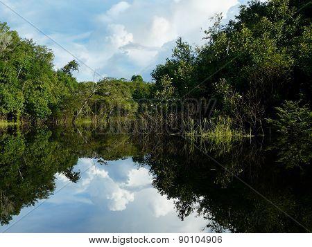 Reflections of Amazon river, Brazil
