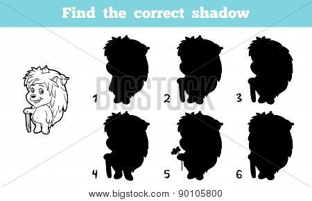 Find The Correct Shadow (hedgehog)