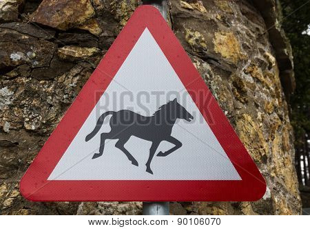 Wild Horse Or Pony  On Road Triangular Warning Sign, United Kingdom.