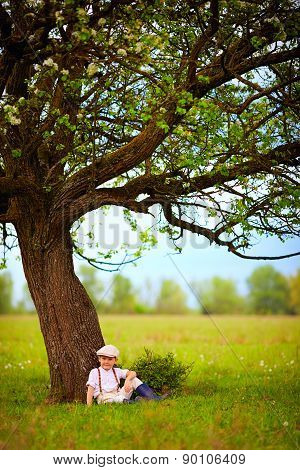 Cute Little Boy Sitting Under The Big Blooming Pear Tree, Countryside