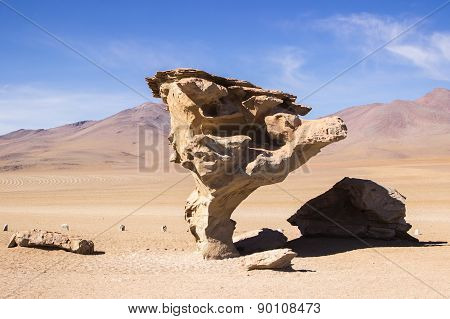 Stone Tree in the Bolivian desert