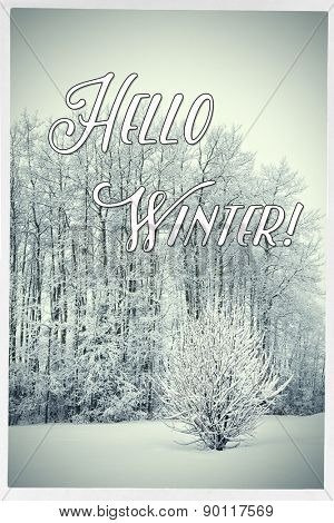 Inspirational Typographic Quote - Hello Winter!