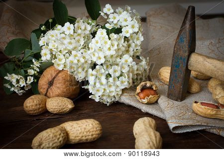 Nuts With A Hammer On The Background Of The Fabric. With White Flowers
