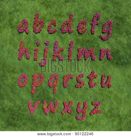 Alphabet Small Letter By Red Color Flowers