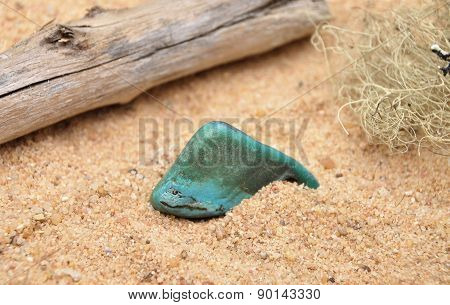 Turquoise On Beach