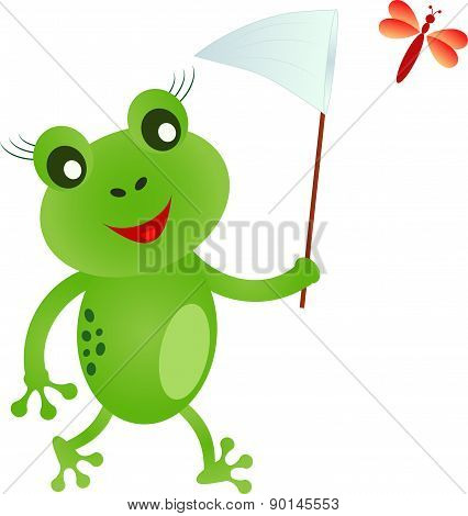 Frog Vector,Frog Cartoon