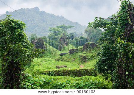 Jungle Vietnam Myson Area