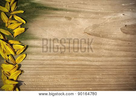 Board Panel With Yellow Sunflower Petals