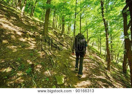 Teenager Hiker Walking On A Mountain Trail