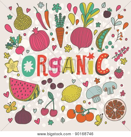Lovely organic concept card in vector. Sweet pear, cherry, pomegranate, watermelon, lemon, red currant, raspberry, fig, blueberry, carambola, beet, carrot, peas, mushrooms, chili and tomato