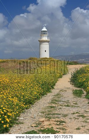 Beautiful Road Through The Blooming Field To The Lighthouse