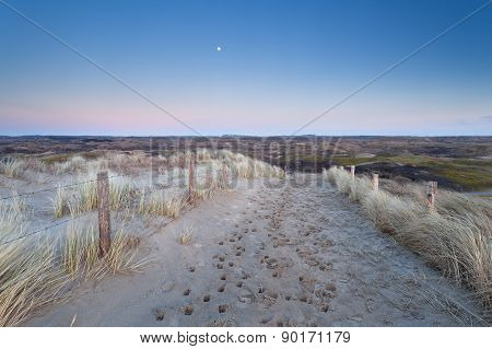 Full Moon Over Sand Path In Dunes