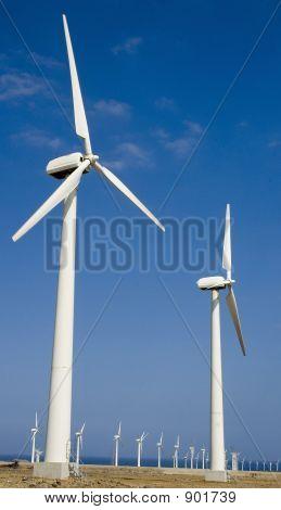 Windfarm In Gran Canaria