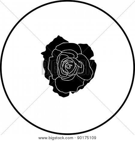 open rose flower symbol