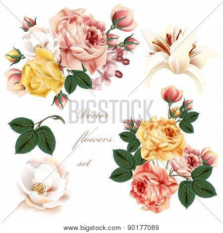 Collection Of Realistic Pastel Flowers