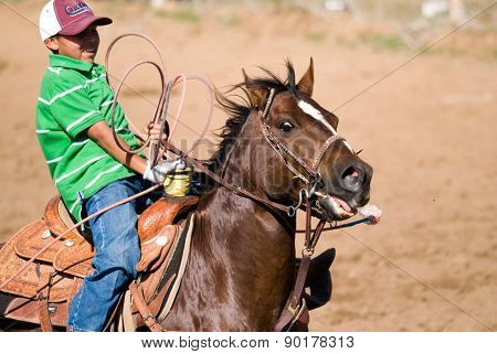 Young Cowboy In Calf Roping Competition