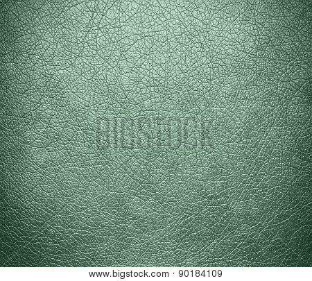Cambridge Blue color leather texture background