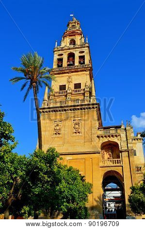 Spain Cordoba Great Mosque Outside (3)