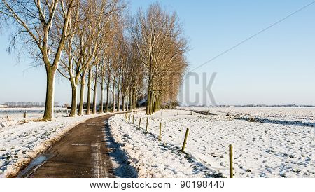 Curved Country Road In An Agricultural Winter Landscape