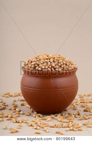 Wheat grains in clay pot with some scattered wheat.
