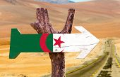 pic of algiers  - Algeria Flag wooden sign with desert road background - JPG