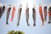 stock photo of flogging  - Japanese carp kite streamer decoration against blue sky - JPG