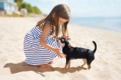 pic of little puppy  - Little girl and dog on the beach in sunny summer day near sea child with puppy outdoors - JPG