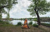 image of bonfire  - Bonfire in the spring forest - JPG