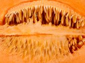picture of muskmelon  - close up Inside Melon with seed background - JPG