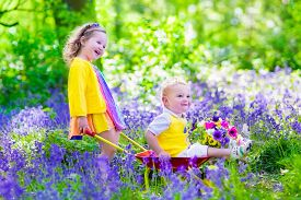 picture of little sister  - Kids gardening - JPG