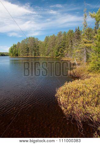 Pristine Northwoods Lake