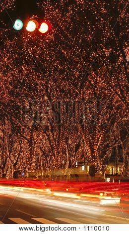 Sendai December Illumination Festival 2
