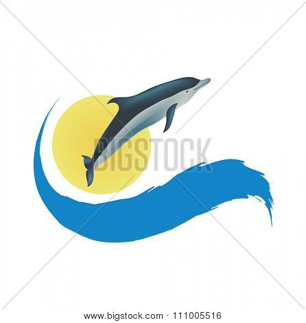 Dolphin illustration, isolated icon on white