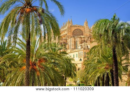 La Seu, Medieval Gothic Cathedral, Palma De Mallorca, Spain