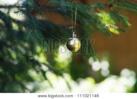 Christmas golden toy ball hanging on branch of a fur-tree