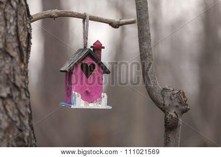 Pink bird feeder