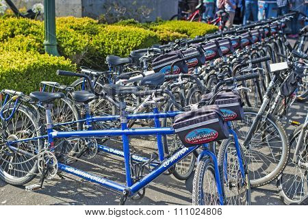 San-francisco-united States, July 13, 2014: Line Of Plenty Public Bicycles For Leisure Activities Ou