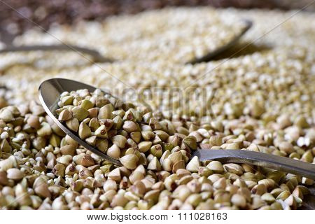 closeup of a spoon full of uncooked buckwheat seeds, on a rustic wooden surface