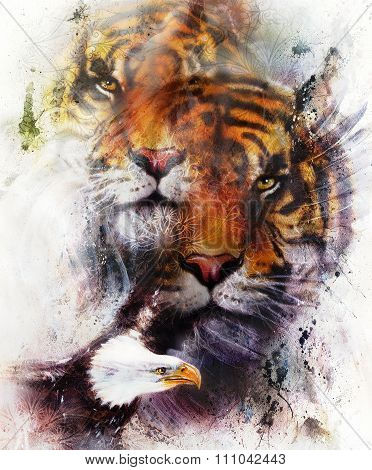 tiger with eagle and ornamental mandala. wildlife animals on painting background, Eye contact. Brown
