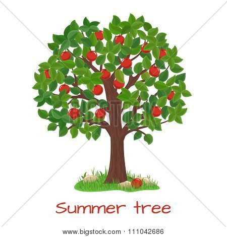 Green apple tree. Summer tree vector