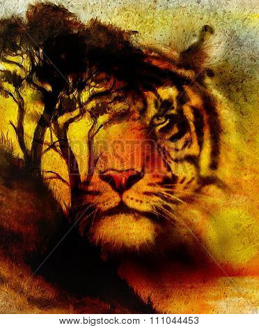 Painting sunset, sea and tree, and tiger portrait,  wallpaper landscape, color collage. and abstract