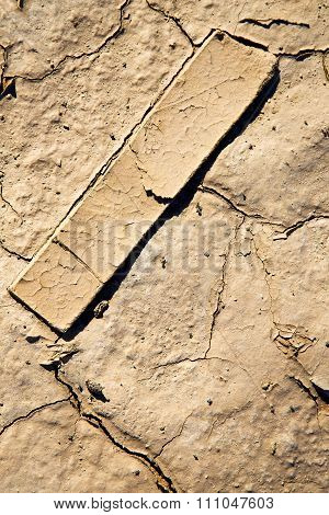 Brown Dry Sand In Sahara Wood Abstract