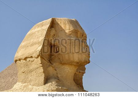Egyptian Sphinx,  civilization of the pharaohs.