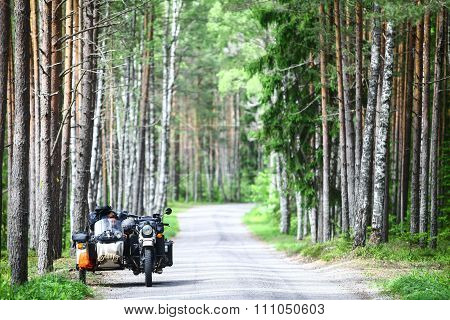 Sidecar In A Forest