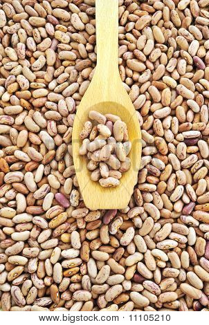 Wooden spoon and dried pinto beans