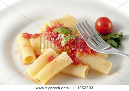 Rigatoni Pasta With Chopped Tomatoes, Basil, Parmesan