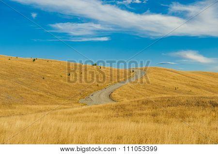 Mackenzie country, South Island, New Zealand