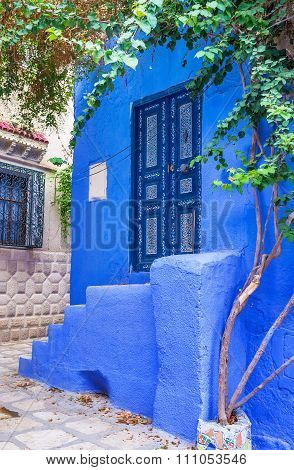 The Blue Home