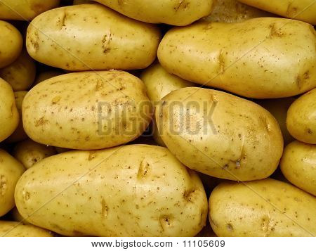 Fresh Yellow Market Potatoes