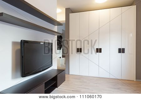 Closet in modern living room